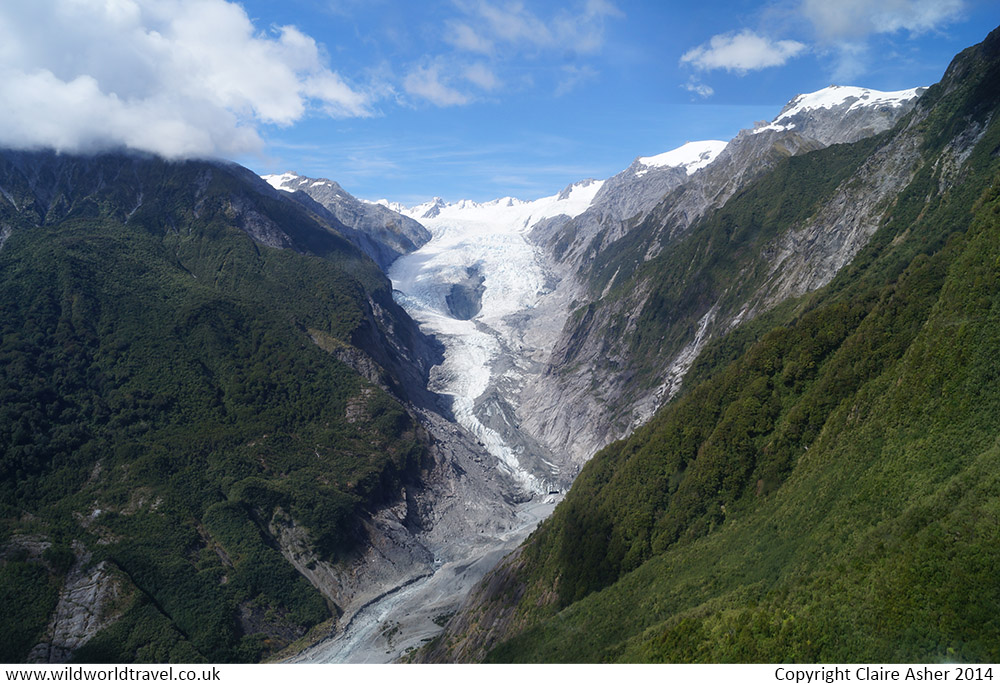NZ_029