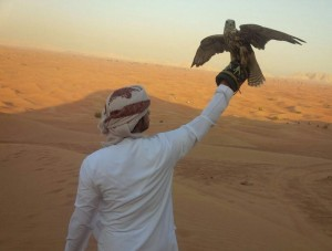 falconry-in-dubai-desert